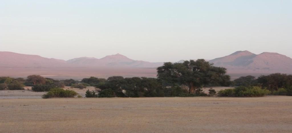 Gert van der Walt Safaris News Letter December 2015_page4_image2